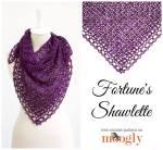 Fortune's Shawlette